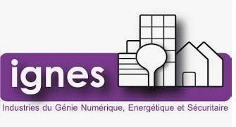 logo IGNES