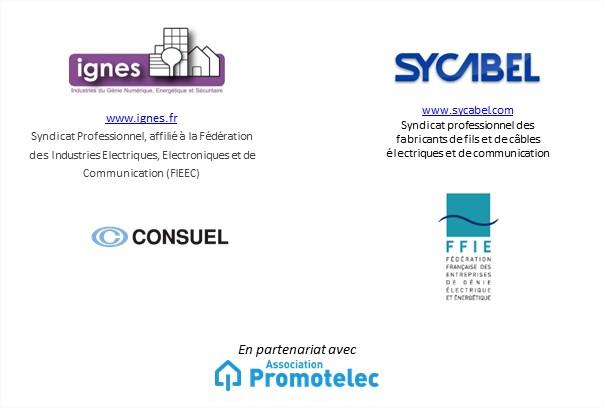 logo partenaire événement IGNES